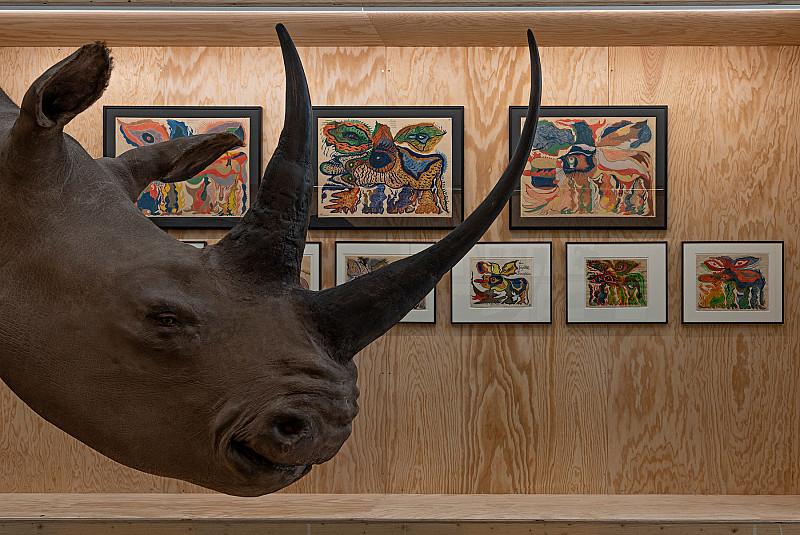L'émission Radio « Nectar » fait la part belle au rhinocéros!